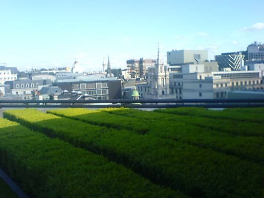 The Coq d'argent roof garden