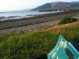 Vegging out (Carlingford)