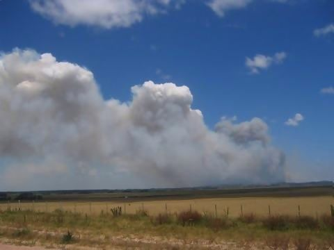 Huge fire on natural reserve (uruguay).