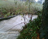 I didn't realise it had rained so much until I saw the beck