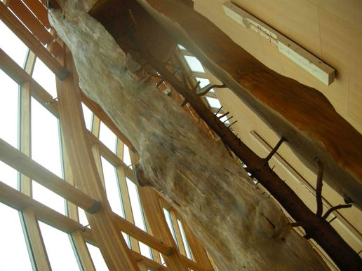 Art Gallery of Ontario - Guiseppe Penone