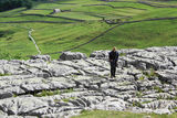 rare moments at malham: part one