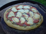 outdoor pizza experiment 3