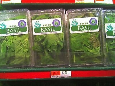 Ha! I mock your fresh basil prices!