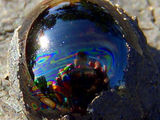 Tar Bubble Reflections