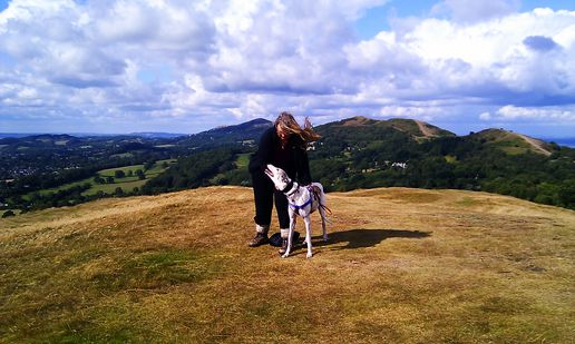 In the Malvern Hills