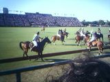 A great polo game!!!