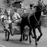 UK: Appleby Horse Fair