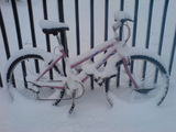 Snowy bike on old ford rd