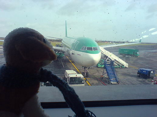 It was Freakdog's first time in a plane