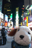 Freakdog does Times Square