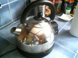 The worst kettle in the world?