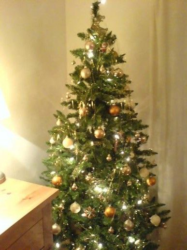Finally got the xmas tree up...