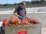 Hog roast anyone?!