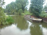 Windy & wet