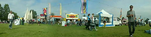 Towersey village festival