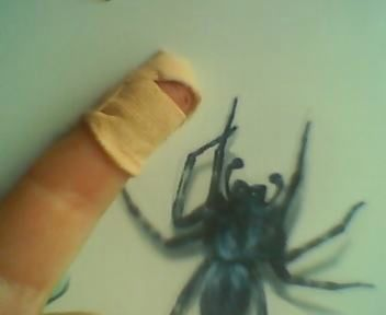 Finger Ninja attacked by giant spider!!