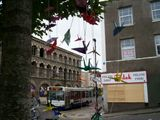 cranes flying home for winter #streetart in #bristol