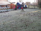 HOOK PRIMARY SCHOOL GARDENS AFTER WINTER