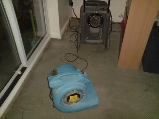 Dehumidifiers and air-movers