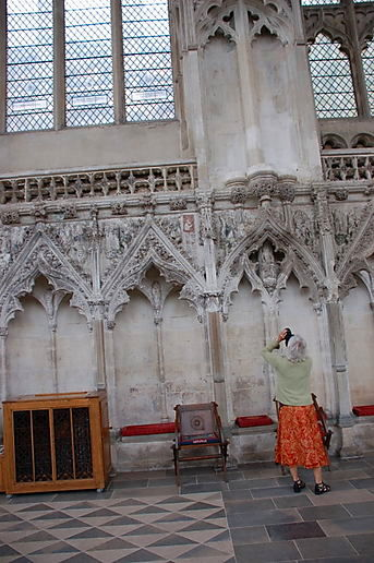 Swamprose captures Ely Cathedral