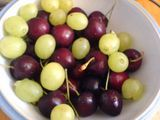 Grapes and cherries for breakfast
