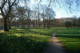 Green Park morning