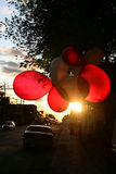 Canada Day Balloons