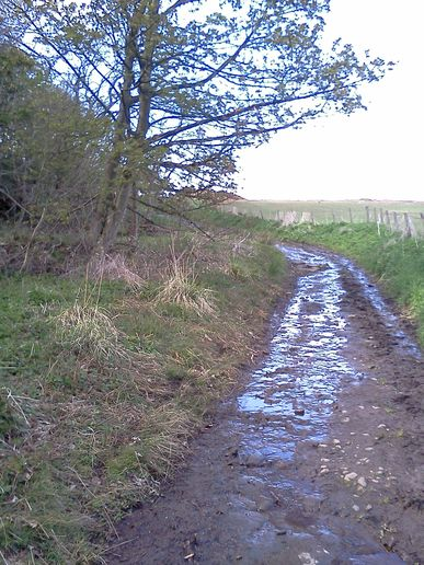 Chance Inn, old road towards Dundee