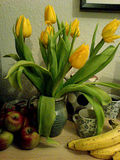 This week's tulips
