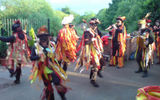 Surprised by Border Morris