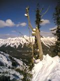 More scenic goodness from Fernie Alpine resort