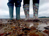HESFES: The Wellies