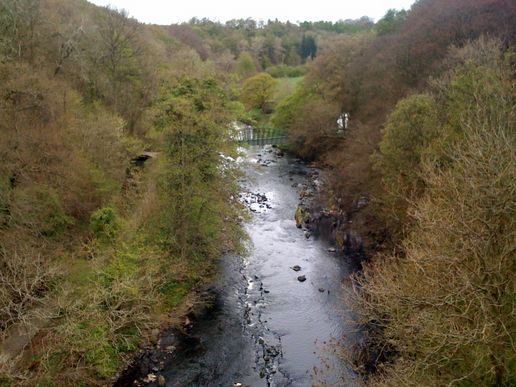 Sights and smells of west lothian walk.