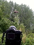 And then a Stork arrived!