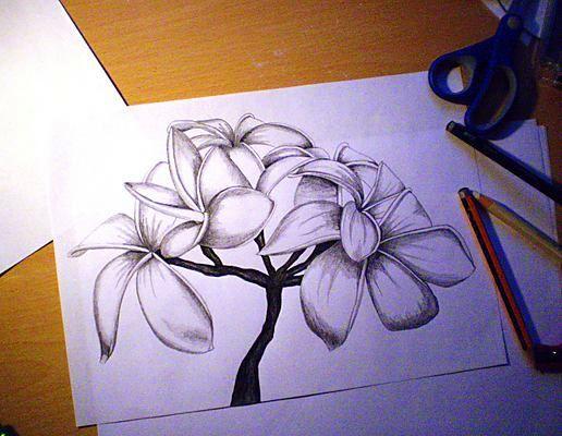 Самые красивые рисунки своими руками 4
