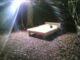 Yes, it's a bed in the woods!