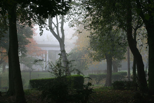 ..and misty Sunday morning in the park