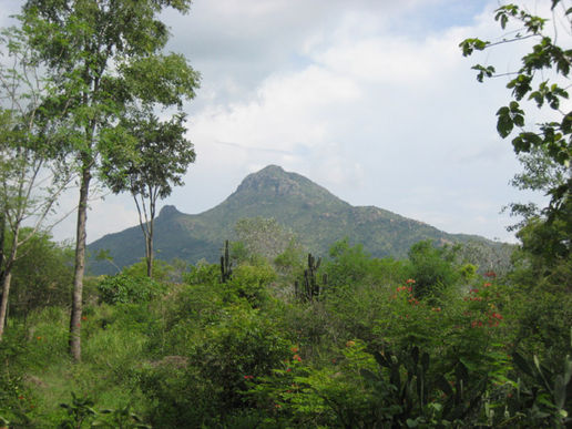 Arunachala, here we are again :-)