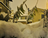 Firenze: the great snowfall of 17th December