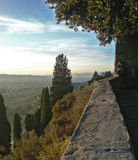 more from Fiesole
