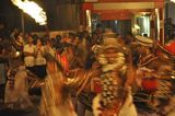 the Perahera  1