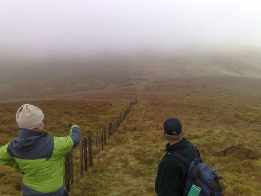 rest of the walk (mostly misty)