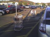 Where are the cart wranglers?