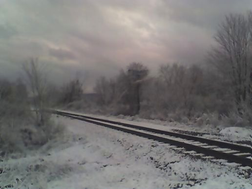 Winter tracks