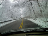 Drive to school, love the trees in winter