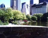 Ooh how I love central park