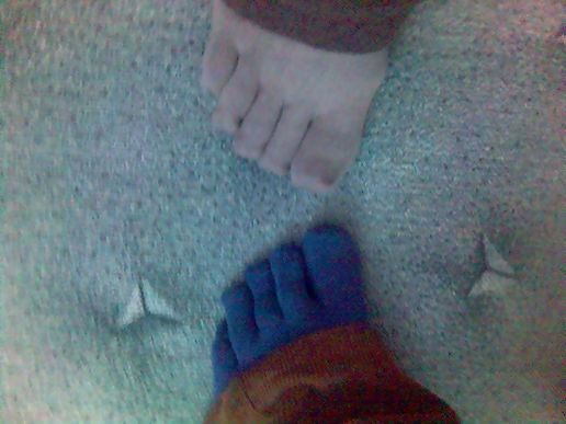 An Assortment of Feet!