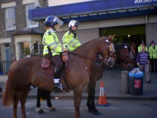 POLICE HORSES!