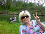 peace to all geese